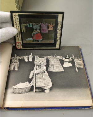 Lantern slide image of kitten hanging laundry and book page image of kitten hanging laundry.